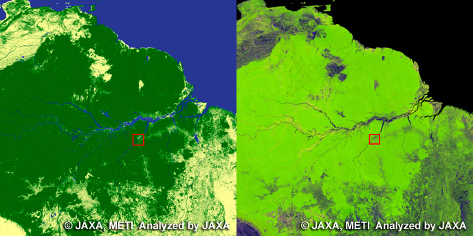 Transamazonia. left: Global Forest/Non-forest map, right: PALSAR 10m Mosaic Image.