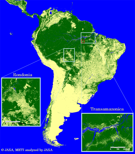 Fig.3-1: Forest/Non-forest map in a typical tropical area (the enlarged images of the Amazon)