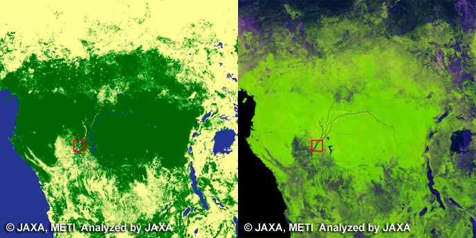 Congo River. left: Global Forest/Non-forest map, right: PALSAR 10m Mosaic Image.