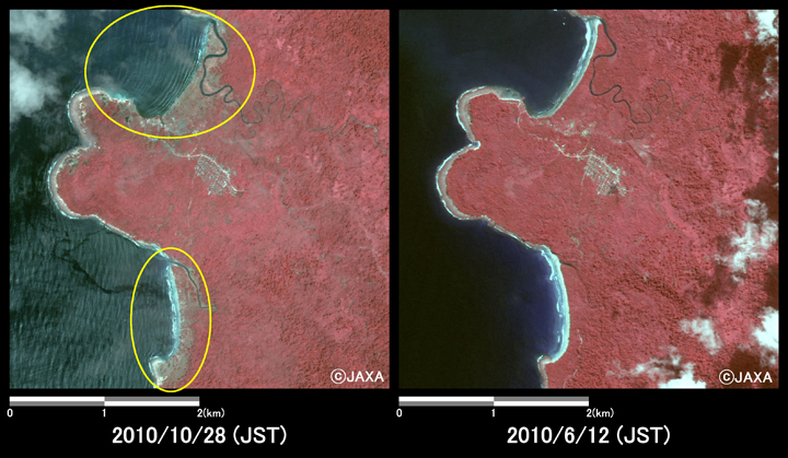 Fig.3: Enlarged images at the coast in South Pagai Island (16 square kilometers, left: October 28, 2010; right: June 12, 2010).