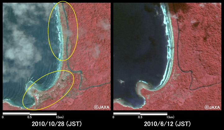 Fig.4: Enlarged images at the coast in South Pagai Island (4 square kilometers, left: October 28, 2010; right: June 12, 2010).