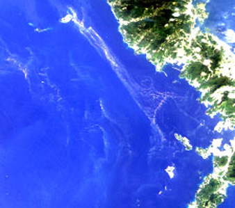 Enlarged image of Seas around the Amakusa Islands on May 4, 2006 observed by AVNIR-2 (R,G,B=Band3,2,1)