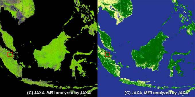 Riau, Indonesia. left: PALSAR 10m Mosaic Image, right: Global Forest/Non-forest map.