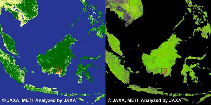 Palangkaraya, Borneo. left: Global Forest/Non-forest map, right: PALSAR 10m Mosaic Image.