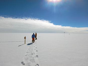 クリーンエリアでの観測地点模索の様子