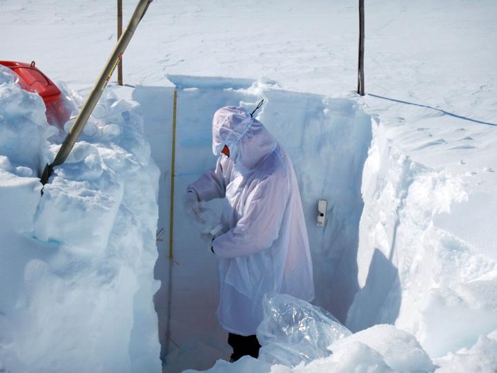 積雪断面構造の観測の様子(観測者:的場助教)